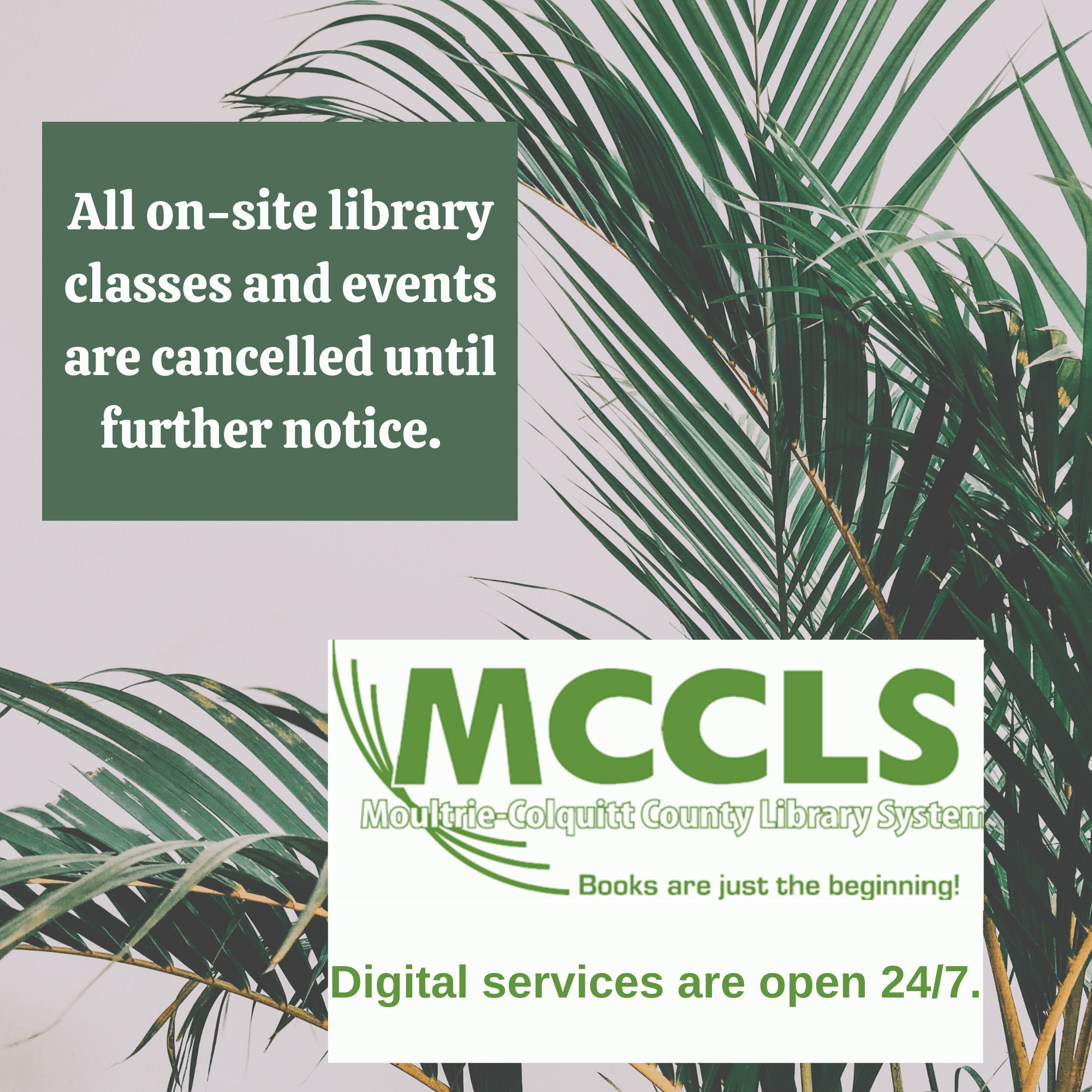 All on-site library classes and events are cancelled until further notice.